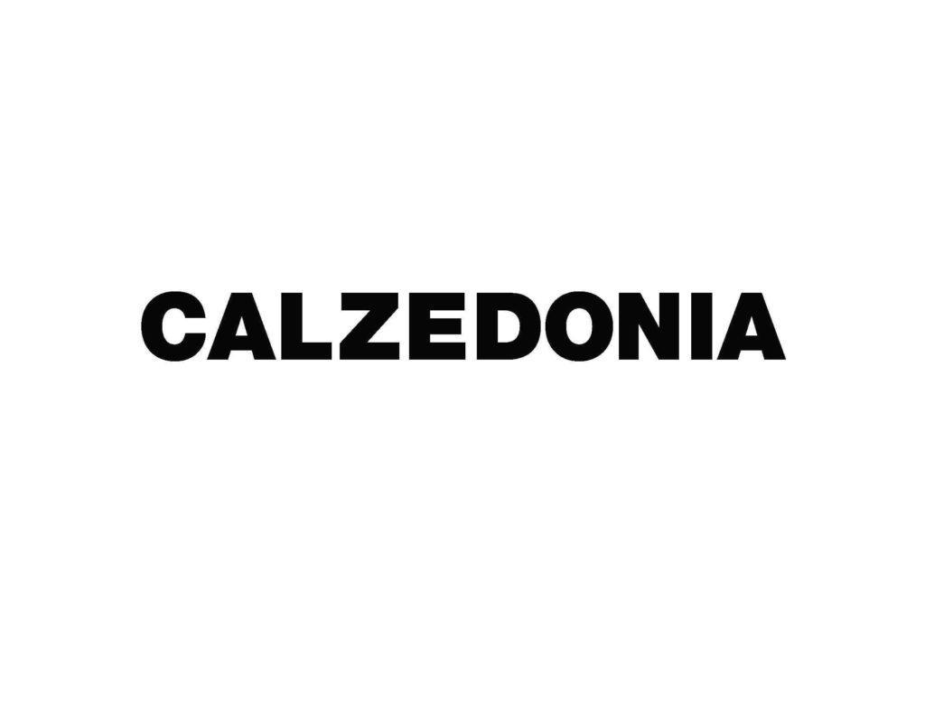 Logo Calzedonia 2002